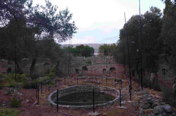 Otok Lokrum – dom 11 vrsta šišmiša