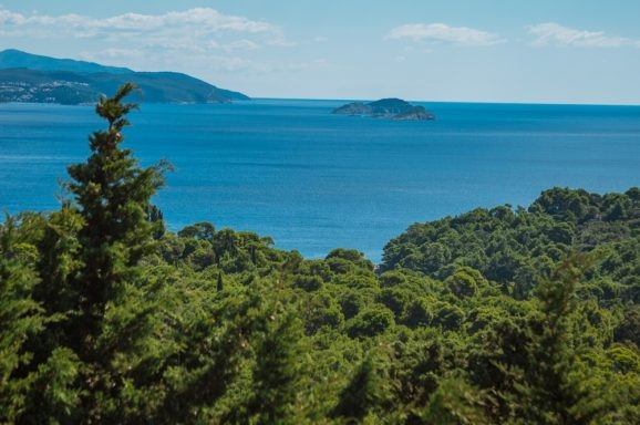 Prezentacija rezultata istraživanja otoka Lokruma: Ptice i Katastar zelenila