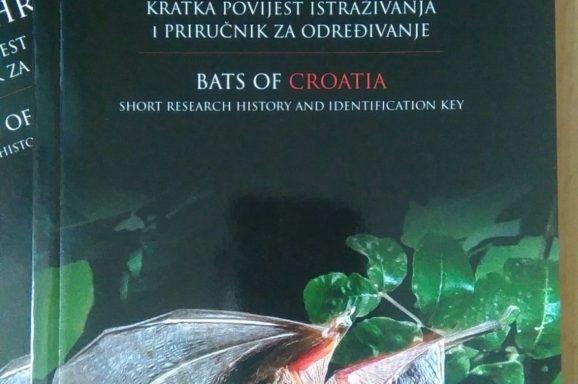 Lokrumski kolombatovićev dugoušan krasi naslovnicu knjige Šišmiši Hrvatske
