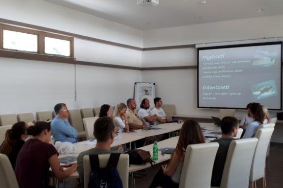 Edukativni program na Lokrumu: zbrinjavanje strogo zaštićenih morskih životinja
