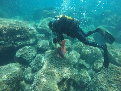 Istraživanje otpada u podmorju otoka Lokruma u okviru projekta ML-REPAIR